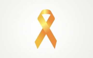 Orange Ribbon Awareness